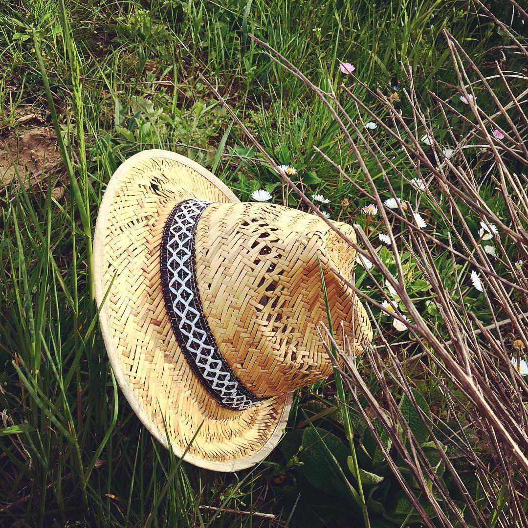 coltivare l'orto in estate