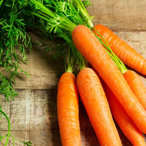gruppo di carote - le guide di come fare orto