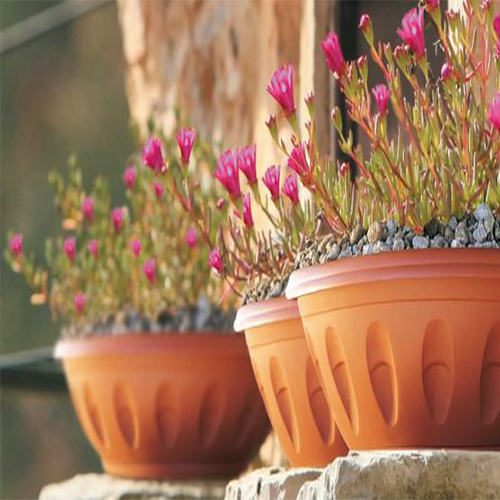 vasi con fiori rosa - la guida di come fare orto