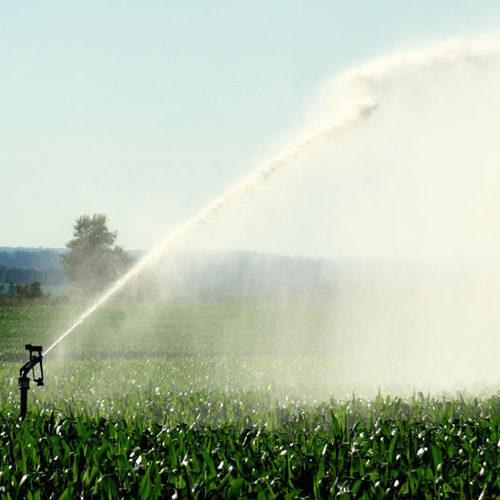 irrigazione a pioggia come fare orto sistemi di