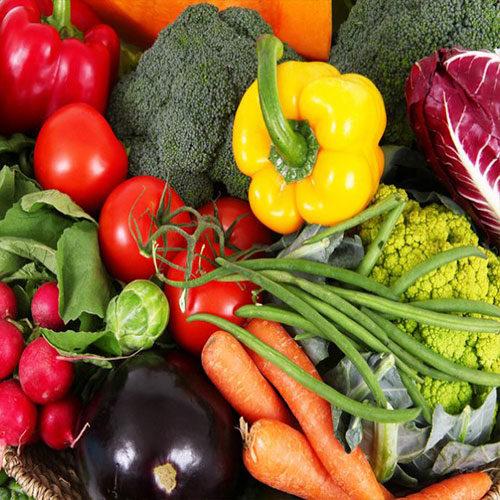 semina delle verdure in estate, carote melanzane broccoli pomodoro rape e radicchio