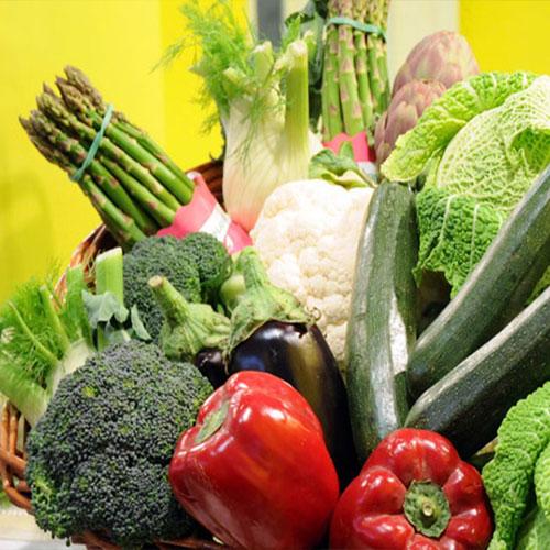 peperoni, cavolo, finocchio e altre verdure di stagione invernale