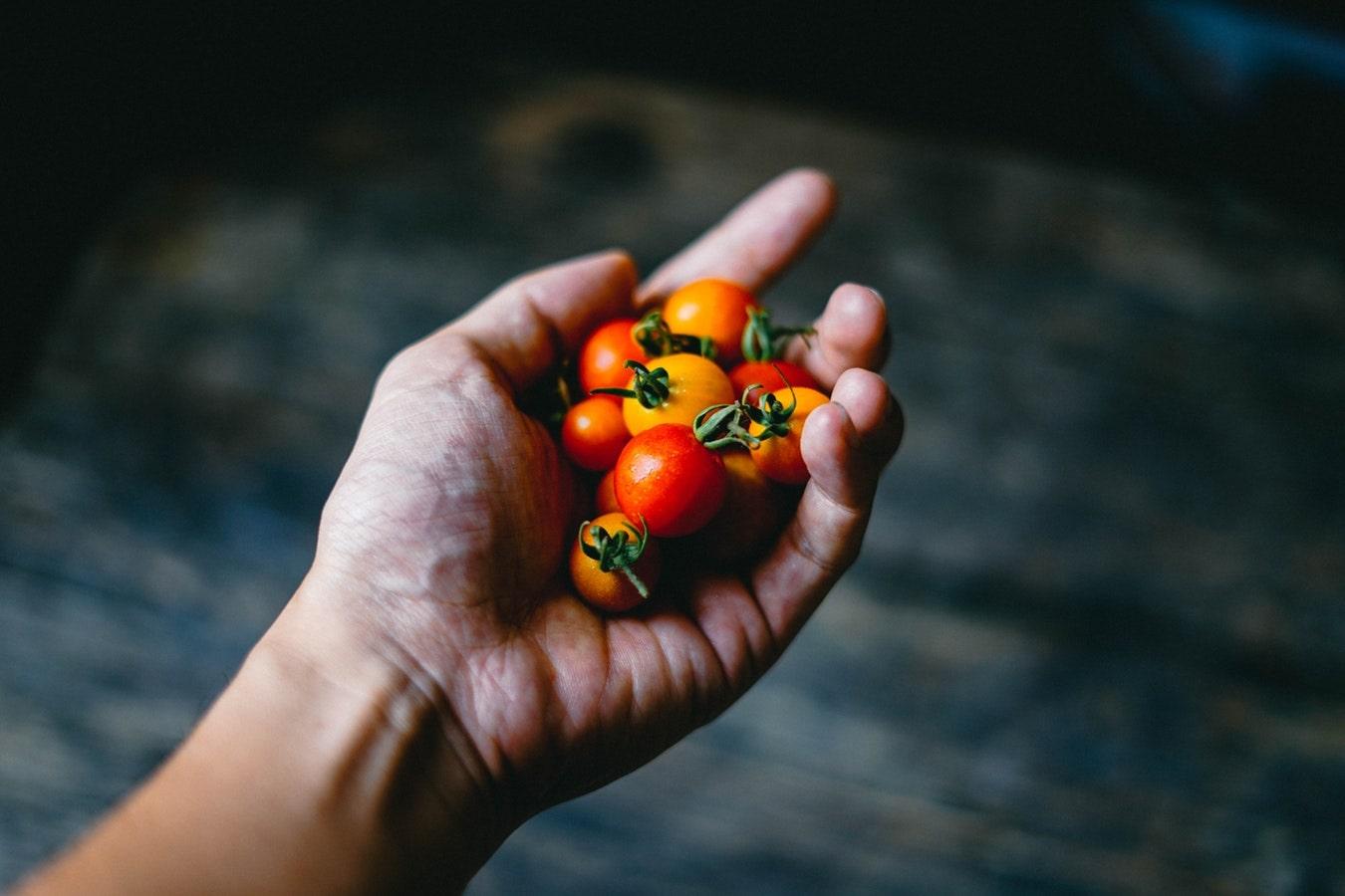 Pomodori sulla mano