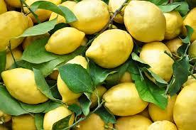 raccolto dei limoni